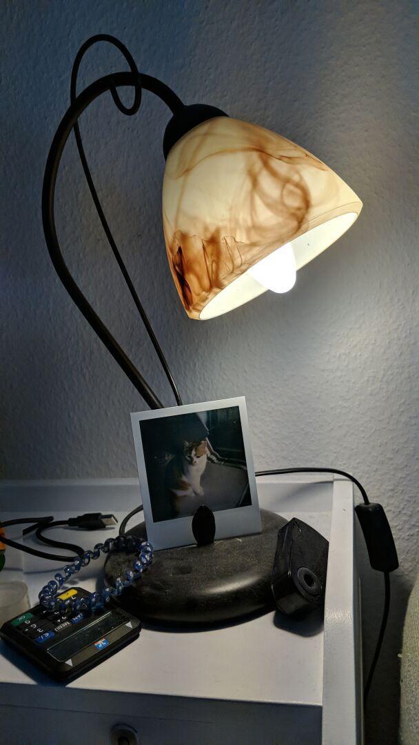 Das Bild einer eingeschalteten Schreibtischlampe. Am Fuß lehnt ein Polaroid-Bild einer Katze. Der Fuß ist verstaubt und es liegt ein Haargummi, Bleistiftspritzer und ein TAN-Generator dabneben